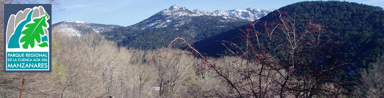 Senda Camino Puricelli