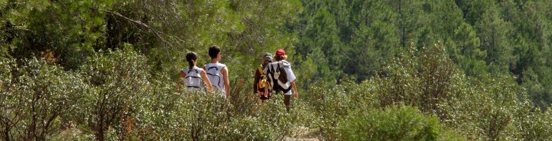 Disfruta de los espacios naturales de la Comunidad de Madrid