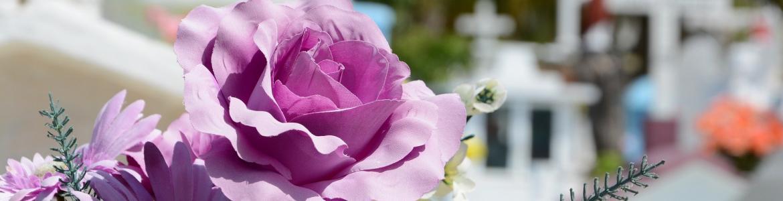 Flores en un cementerio