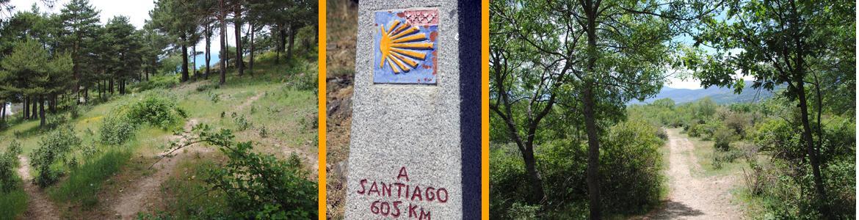 IMAGEN BALIZA CAMINO SANTIAGO