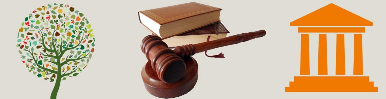 Imagen de un árbol, un mazo de juez con libros e icono de un edificio de justicia
