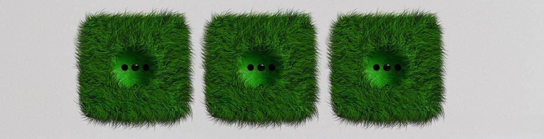 Zócalos de hierba