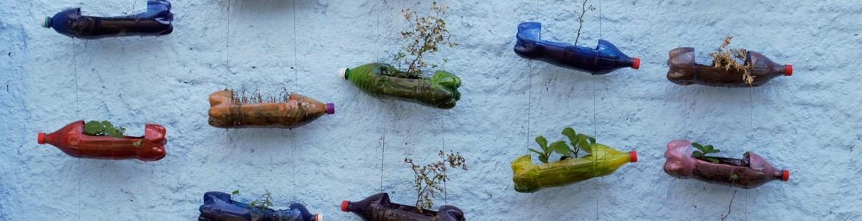 Macetas con botellas de plástico