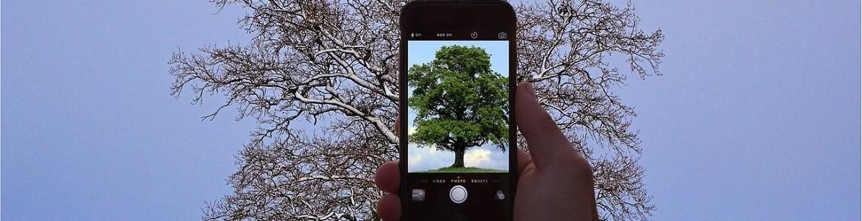 Móvil, árbol