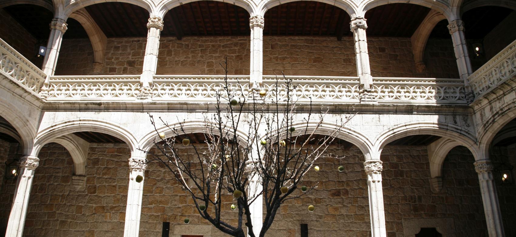 Patio de Armas Castillo de los Mendoza