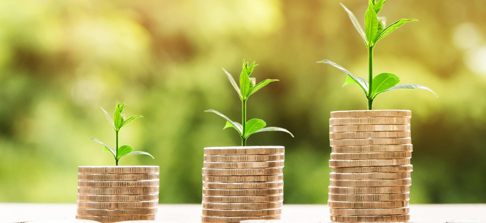 Monedas apiladas con brotes de plantas