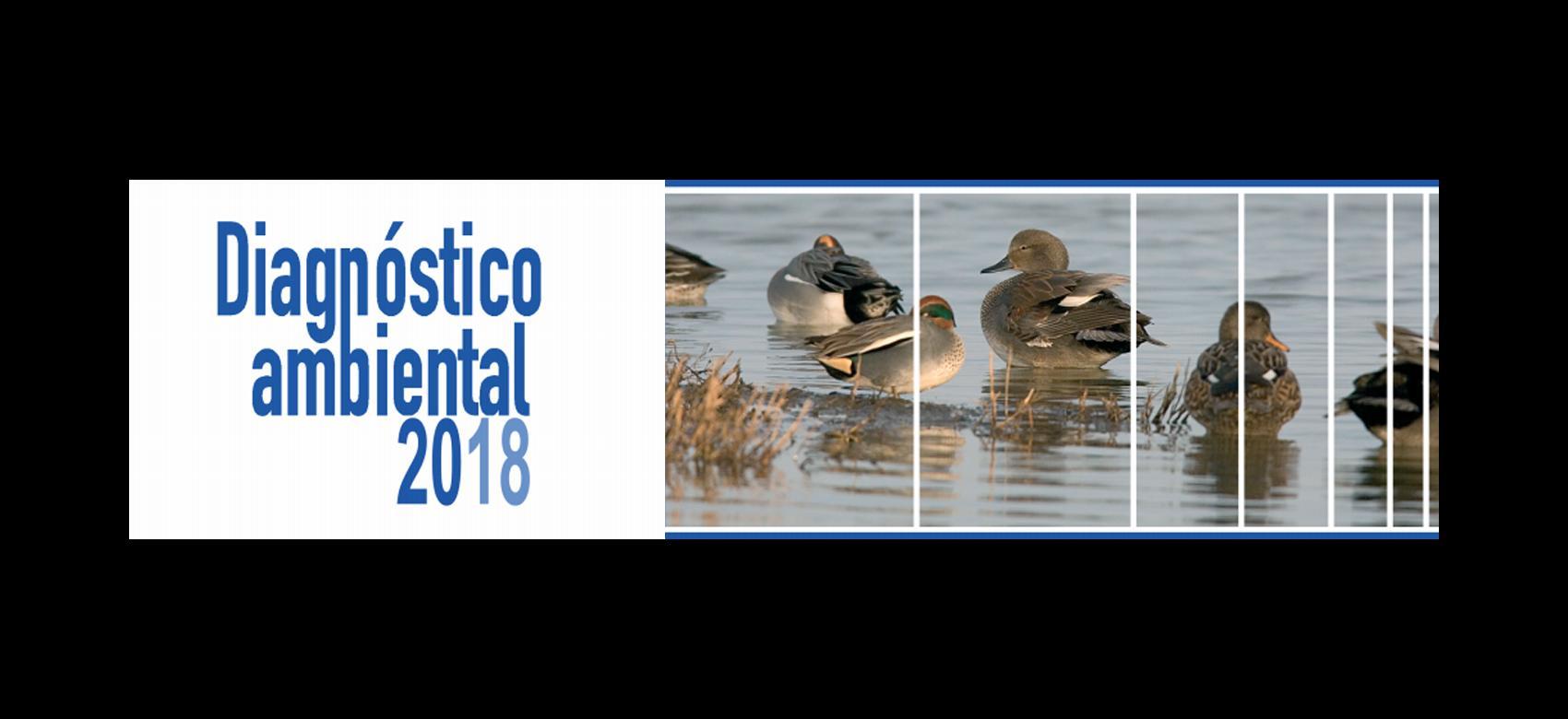 Diagnóstico ambiental 2018