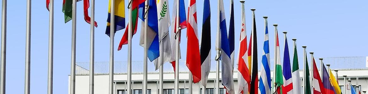 Empleo Público y Oposiciones en la Unión Europea