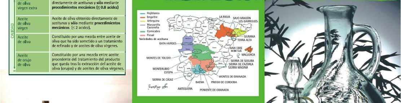 Imagen del folleto Ponga calidad en su mesa. El aceite de oliva