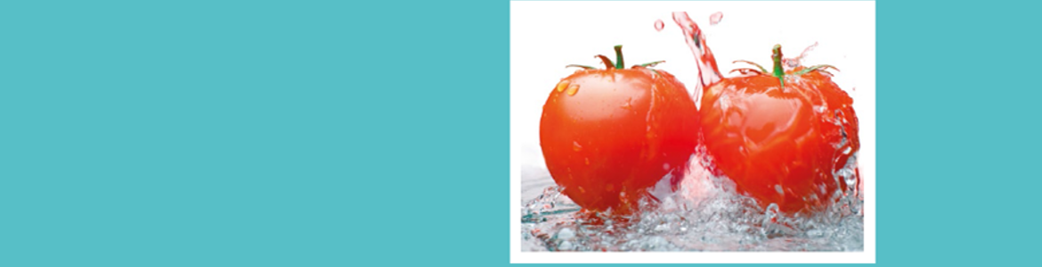 Potada del folleto sobre cinco claves de seguridad alimentaria
