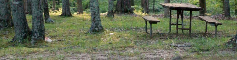 Mesa de picnic en un parque