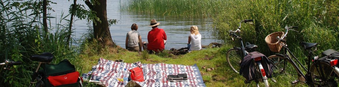Imagen de una familia al borde de un lago en un picnic con platos preparados