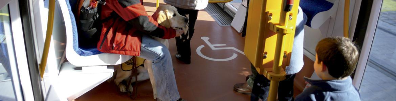 Persona con perro guía en coche de Metro Ligero