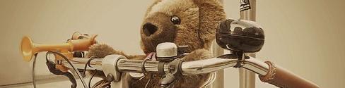 oso de peluche montado en bicicleta