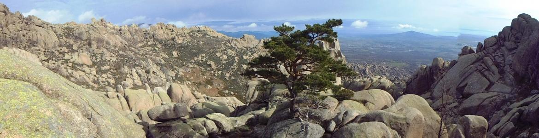 Pradera de los Murciélagos en La Pedriza. Parque Nacional de la Sierra de Guadarrama