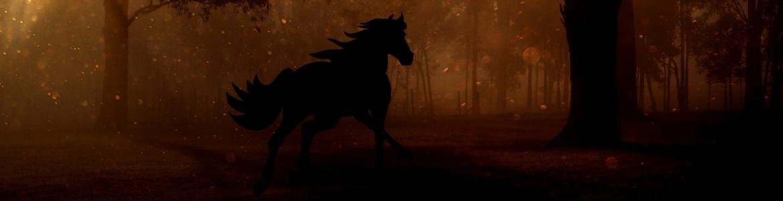 Imagen de la silueta de un caballo en un bosque nocturno
