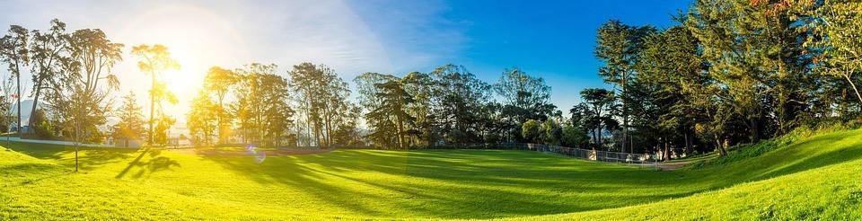 Paisaje de una prado verde con sol