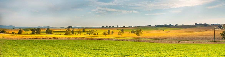 vista de paisaje en el campo
