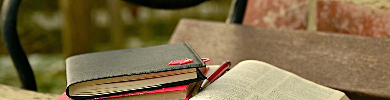 conjunto de libros en un banco de un parque