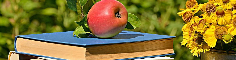 conjuto de libros junto a una manzana y margaritas