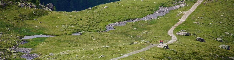 Prados de alta montaña con un camino