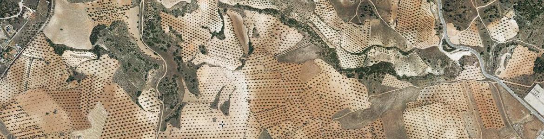 Imagen de una captura del visor SIGPAC