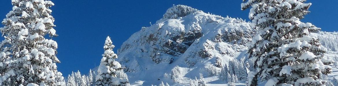 paisaje_nevado.jpg