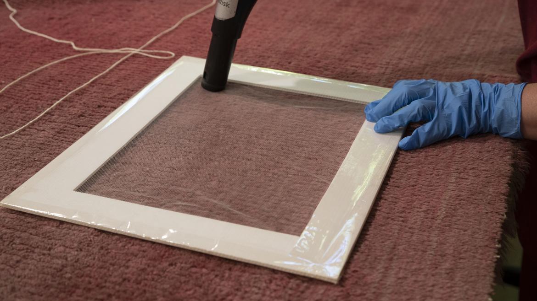 Proceso de limpieza de la alfombra