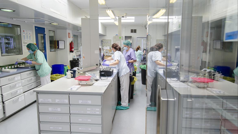 profesionales del hospital gregorio marañón