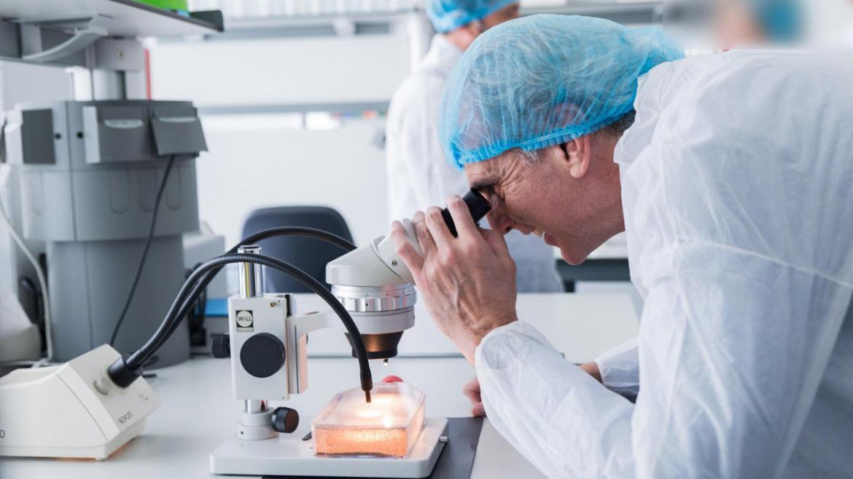 El consejero de Sanidad, Enrique Ruiz, mira por el microscopio