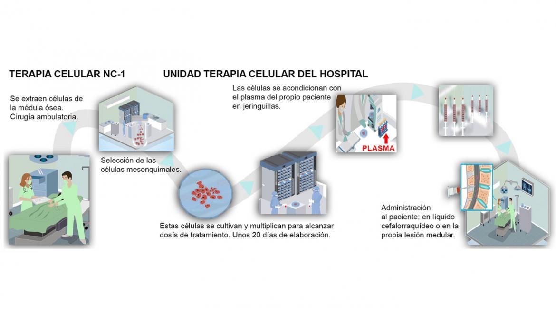 Diagrama que refleja todo el proceso del tratamiento