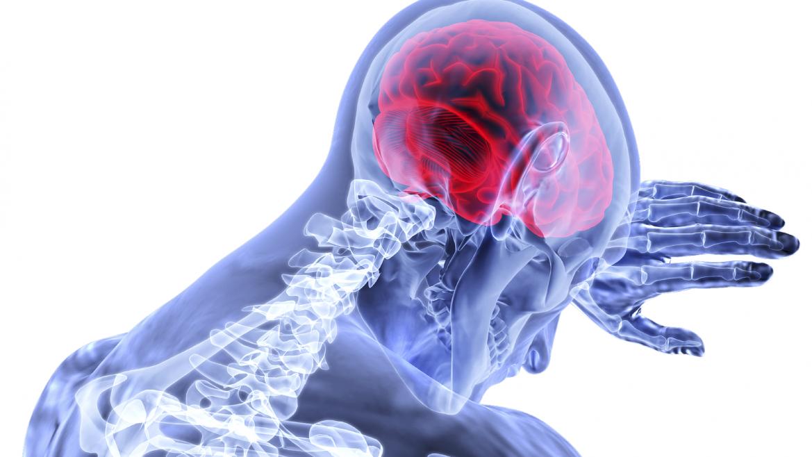 Imagen icónica de un cerebro y una columna vertebral