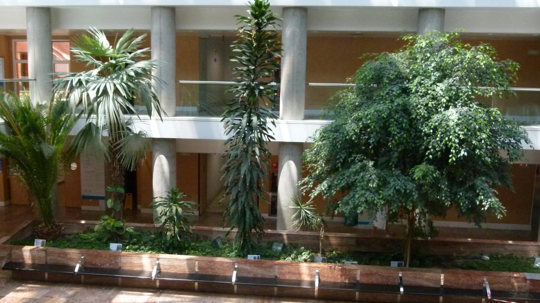 Jardinera Central
