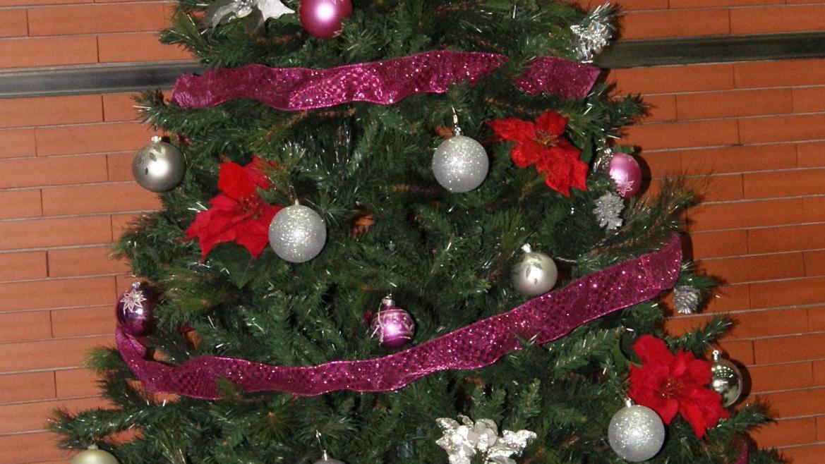 Fotos Profesionales De Navidad.Un Coro Llena De Villancicos La Navidad En El Hospital Santa
