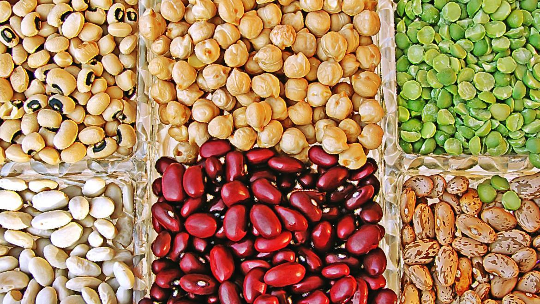 diferentes legumbres en una cuadrícula: 4 variedades de judías, garbanzos y guisantes