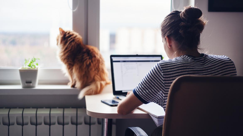Una chica frente al ordenador