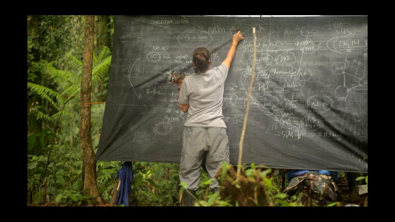 Mujer escribiendo en una pizarra rodeada de naturaleza