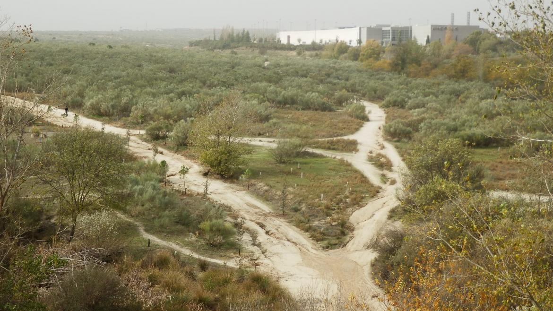 Imagen de la vía pecuaria de la Cañada Real