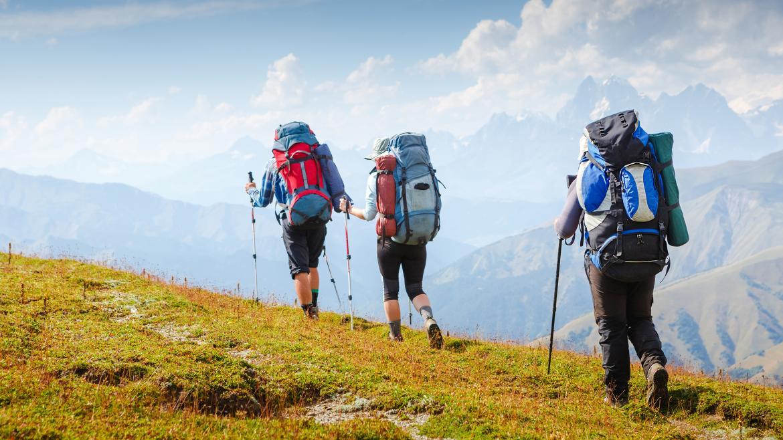 Excursiones al campo y la montaña
