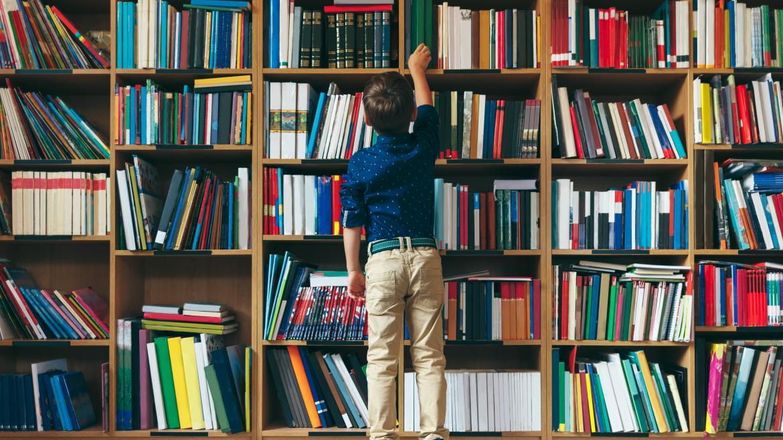 libros biblioteca educación