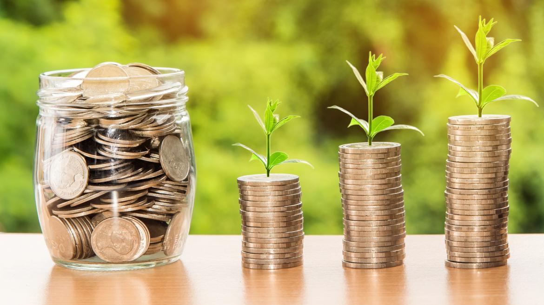 monedas apiladas unas sobres otras en tres montones con una rama verde sobre ellas y un tarro de cristal con monedas a la izquierda