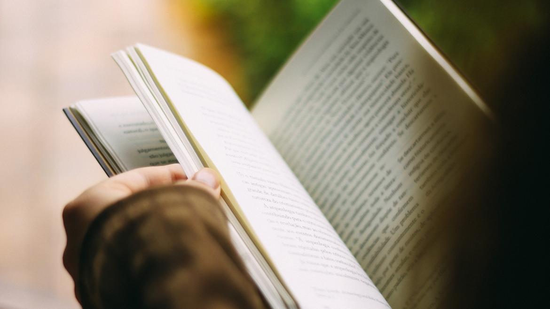 Páginas libro