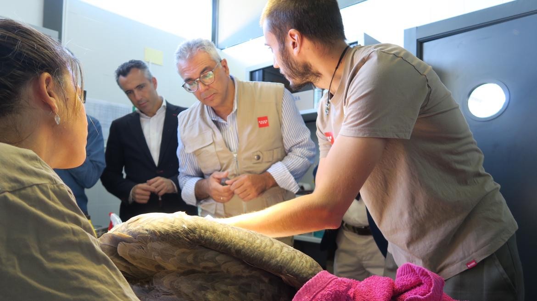 Carlos Izquierdo visita el Centro de Recuperación de Animales Silvestres (CRAS) con motivo del Día Mundial de los Animales