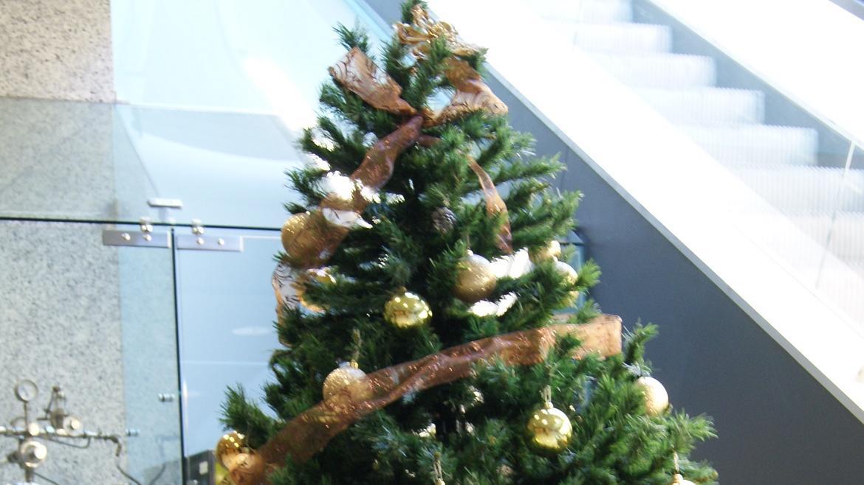Árbol de Navidad en el Hospital Santa Cristina