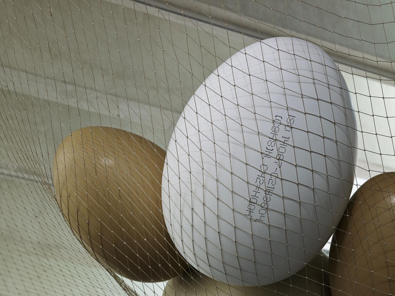 Huevos dentro de una malla negra