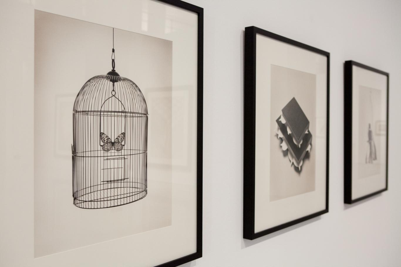 Tres fotos de Chema Madoz en blanco y negro. En la primera, más enfocada, aparece una mariposa enjaulada