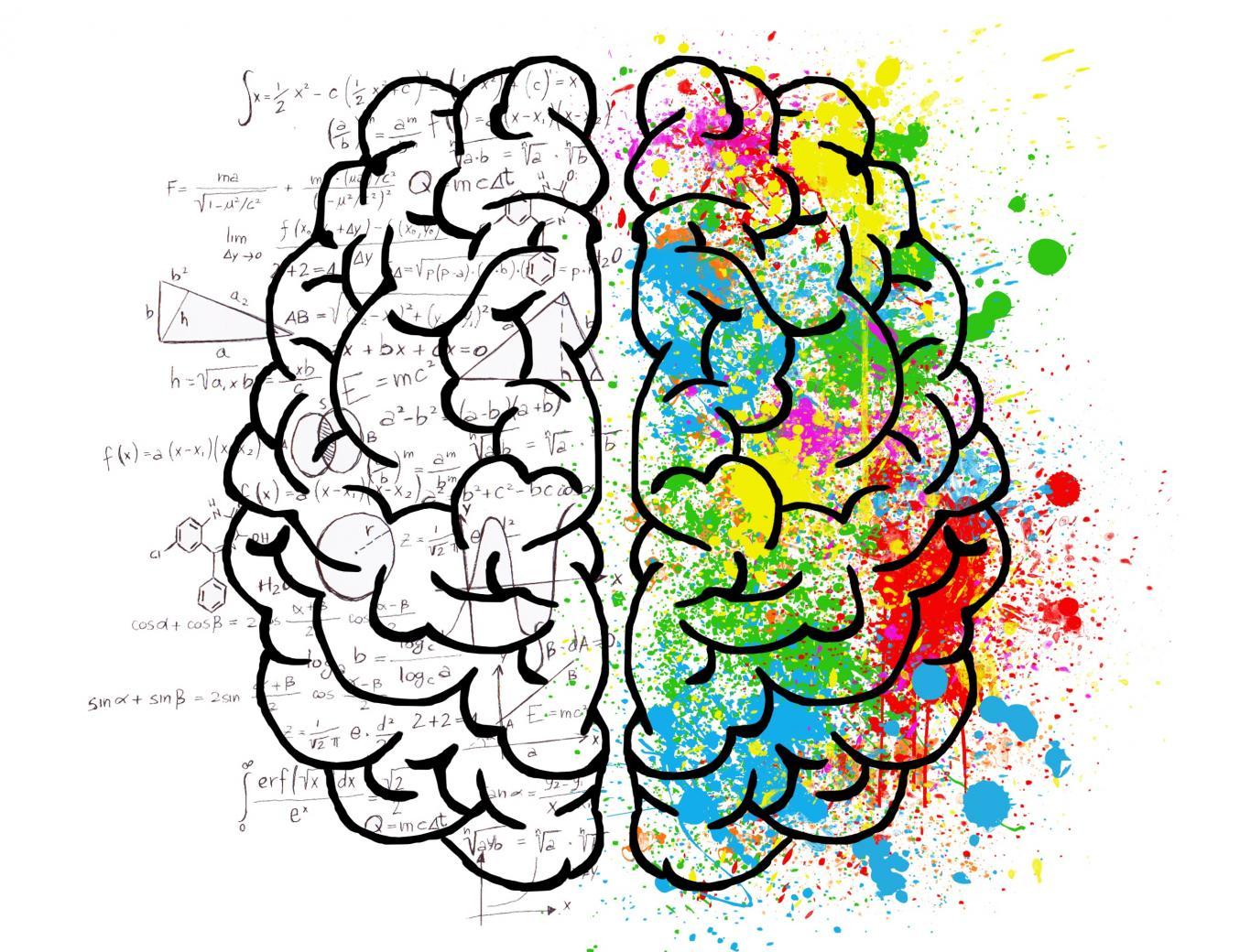 Área de Psicología