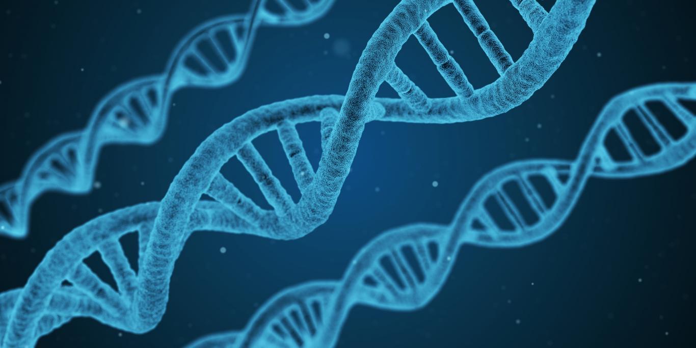 Área de Ingeniería Biomédica