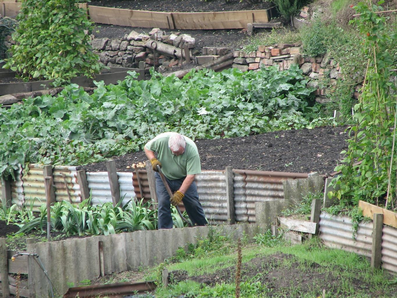Jardinero cavando la tierra