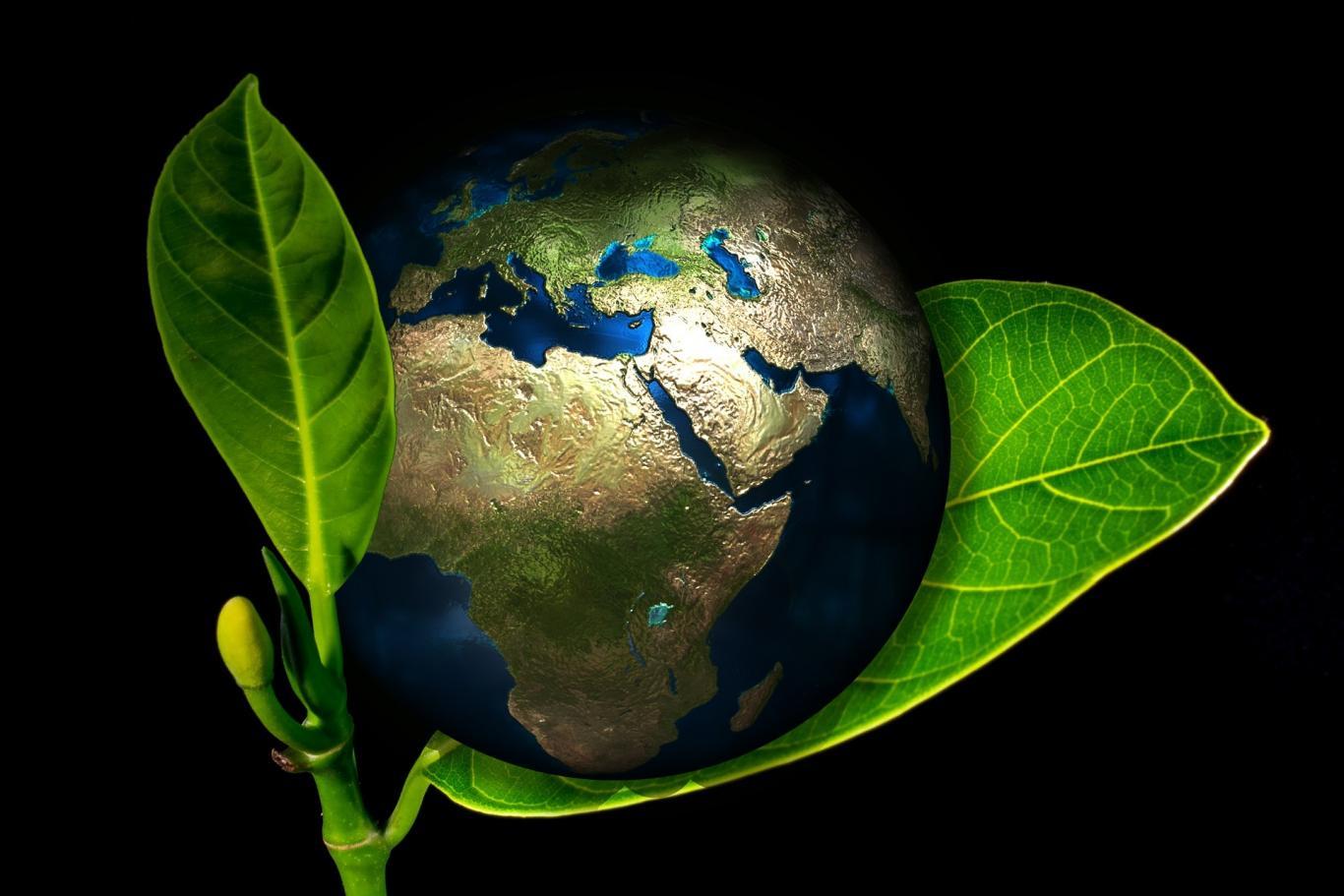 Imagen de una bola del mundo sostenida por una hoja